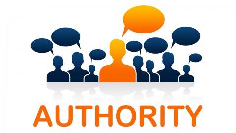Domain Authority Infografik